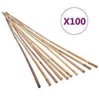 vidaXL Zahradní bambusové tyče 100 ks 170 cm