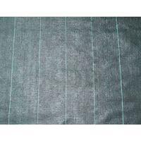 Nature Textilie proti plevelu 2 x 5 m černá