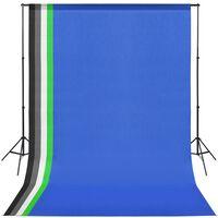 vidaXL Profesionální foto studio set: 5 pozadí a nastavitelný rám