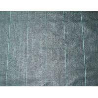 Nature Textilie proti plevelu 4,2 x 5 m černá